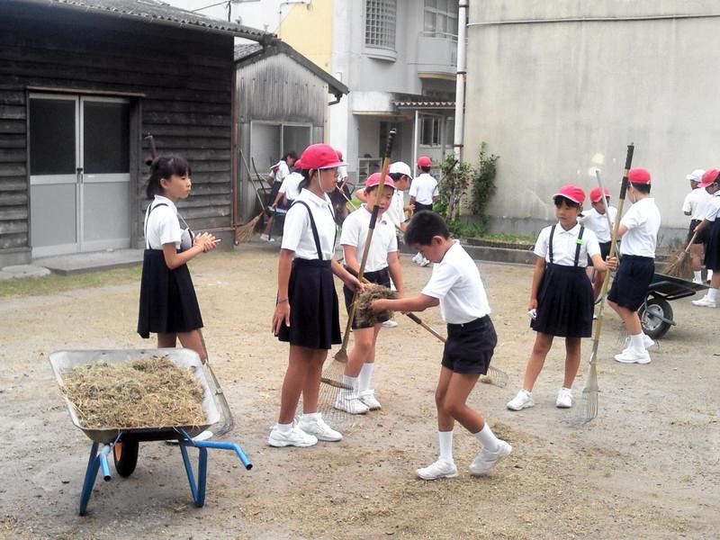 伸びゆく若木(生福小学校Blog): 出校日